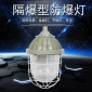冠奕达-仓库-防爆灯隔爆型外壳BCD-可装金卤灯钠灯节能灯光源